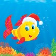 Coral fish wearing a Christmas cap - Stock Photo
