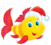 Coral fish wearing the Christmas cap — Stock Photo