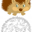 Hedgehog — Stock Vector