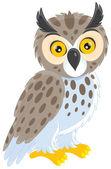 Long-eared owl — Stock Vector