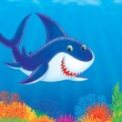 Great white shark swimming in a tropical sea — Stock Photo #16866835