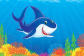 熱帯の海で泳いでいる偉大な白いサメ — ストック写真