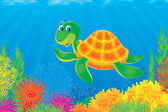 Turtle in the sea — Stock Photo