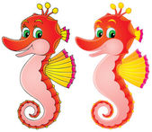 Sea Horse (color and black contours) — Stock Photo