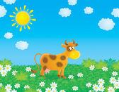 Bir alanda inek — Stok fotoğraf