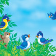 Birds on a branch — Stockfoto #16870677