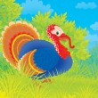 Turkey — Stock Photo #17005289
