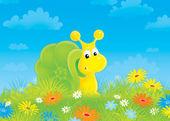 Snail among flowers — Stock Photo