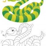 Постер, плакат: Striped snake