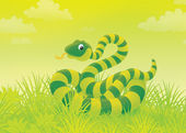 Snake in grass — Stock Photo