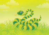 Snake in grass — Stock Photo