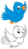 Blue bird — Stock Photo