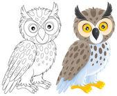 Long-eared owl — Stock Photo