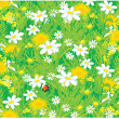 Field flowers and ladybug, vector background — Image vectorielle