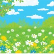 Summer field with wild flowers, against a blue sky with white clouds — Stock Vector