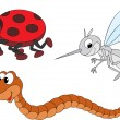 Ladybug, mosquito and worm — Stockvektor