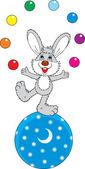 Circus Hare Juggler — Stock Vector