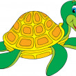 Turtle — Stock Vector #30882533