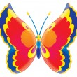 Colorful butterfly — Stock Photo