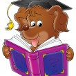 Brown dog wearing a graduation cap and reading a book. — Stock Photo