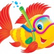 Blue eyed yellow and red fish snorkeling — Stock Photo