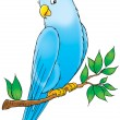 friendly blue parakeet perched on a tree branch. — Stock Photo
