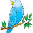 Friendly blue parakeet perched on a tree branch. — Photo