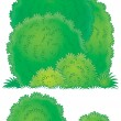 Three different lush green bushes — Stock Photo