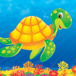 Sea turtle swimming above a coral reef — Stock Photo #31116769