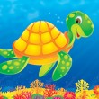 Sea turtle swimming above a coral reef — Stock Photo