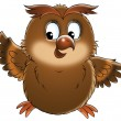 Chubby brown owl  — Stock Photo