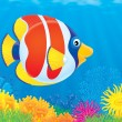 Tropical fish swimming in a coral reef. — Stock Photo