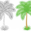 Outlined and colored palm tree.  — Stock Photo