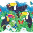 Three colorful toucans — Foto de Stock