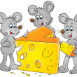 Three gray mice dining on a big wedge of swiss cheese — Stock Photo