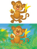 Funny monkey — Stock Photo