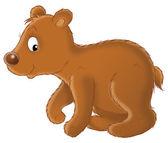 Cute brown bear cub — Stock Photo