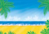 Beach in sunny day — Stock Photo