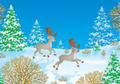 Two caribou reindeer running through snow — Stock Photo