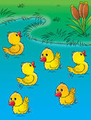 Group of happy yellow ducklings playing in a pond. — Stock Photo