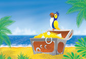 Pirate parrot and treasure chest — Stock Photo