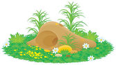 Gopher or mole hill with flowers and grass — Stock Photo