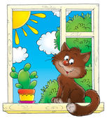 Cute brown house cat sitting by a cactus in a window — Stock Photo