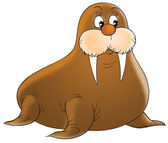 Cute brown walrus with short but sharp tusks — Stock Photo