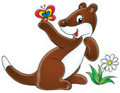 Cute brown and white ferret by a flower — Stock Photo