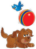 Puppy chasing a ball — Stock Photo