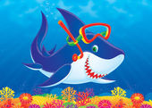 Snorkeling shark swimming over a colorful coral reef. — Stock Photo