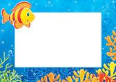 çerçeve bir turuncu ve kırmızı çizgili tuzlu su balık — Stok fotoğraf