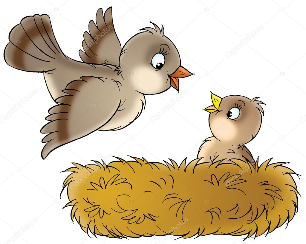 cute baby birds in nest Lion Clip Art Free tiger images free clip art