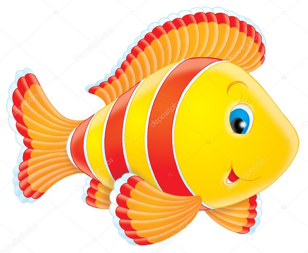 可爱,蓝眼睛的白色, 红色, 橙色和黄色的鱼,在白色背景上— photo by